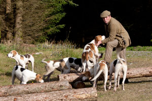 Hunting Photography by Betty Fold Gallery Hawkshead Cumbria