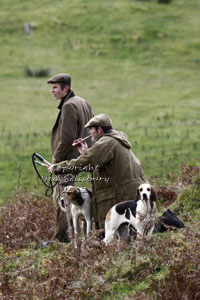 Hunting pictures by Betty Fold Gallery Hawkshead Cumbria