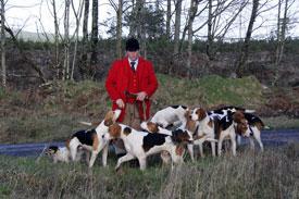 Foxhound photography by Neil Salisbury