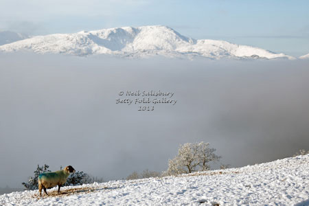 Lake District Photograhy by Betty Fold Gallery