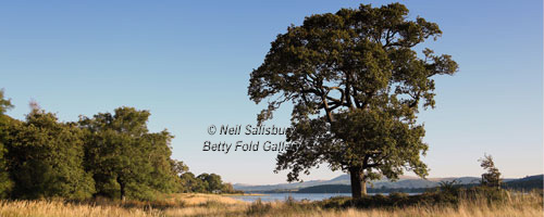 Bassenthwaite Photography by Betty Fold Gallery