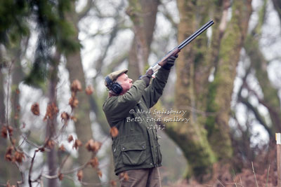 Pheasant Shooting Images by Betty Fold Gallery