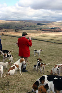 Hunting Images lake district by Neil Salisbury