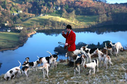 Fox Hunting- Lakedistrict, Photography by Betty Fold Gallery